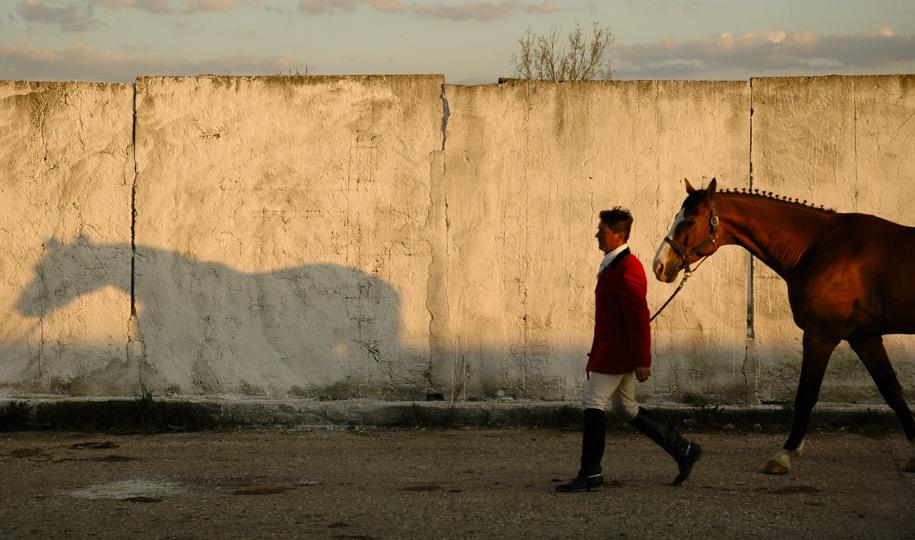 lumpan_©_NG_horses_003
