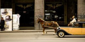 lumpan_©_NG_horses_005
